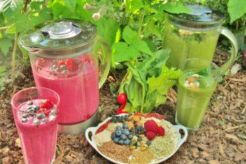 Ernährung&Verträglichkeit_Smoothie